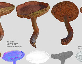3D model Suillus bovinus aka Jersey cow mushroom