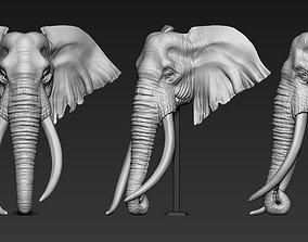 3D print model Elephant African Head