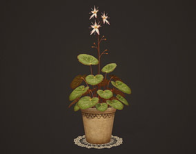 3D model House Plant - PBR Game Ready