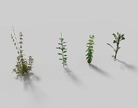 low poyl meadow grass pack 3D model