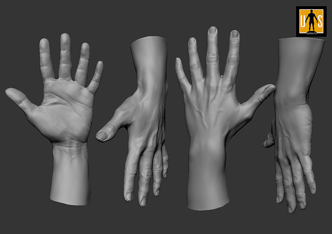 hand-in-4-poses-3d-model-low-poly-obj-mt
