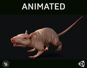 Naked Rat 3D model