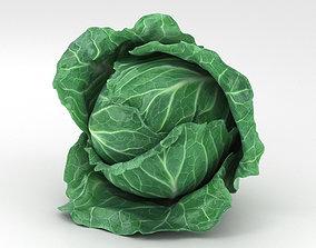 3D model Cabbage