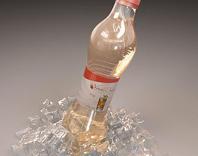 3D model Bottle with ice various