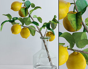 3D Lemon branch