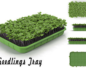 Seedlings Tray 2 3D