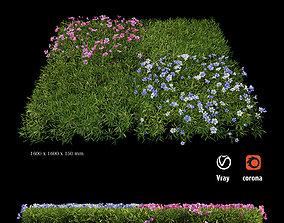 Plant Flower set 06 3D model