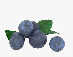 3D model animated Blueberry