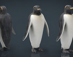 Penguin 3D model game-ready animals