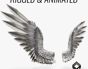 3D asset animated Pair of Bird Wings C4D