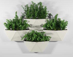 3D model Hexagon Wall Planter