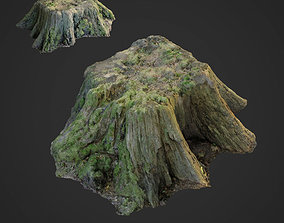 3d scanned nature tree stump 006 game-ready