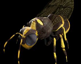 Honeybee Low poly and fully rigged 3D asset