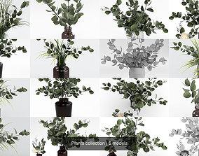 Plants collection flower 3D