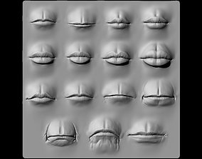 Lip Set 1 VDM Brush and Highpoly 3D model