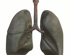 Lungs Smoker 3D asset realtime