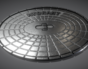 3D model Sewer Cover 2 Hydranten High-Poly