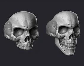 3D model rin Skulls