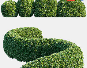 3D model Auto hedge collections 3