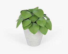 Slant Light Grey Short Planter 3D model roslini
