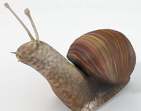 3D asset VR / AR ready Snail