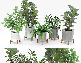 decor 3D Bungalow Planter Collection