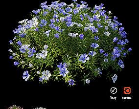 3D Plant Flower set 18