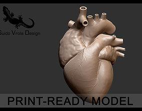 Printable accurate human heart