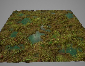3D model PBR seamless jungle swamp ground textures