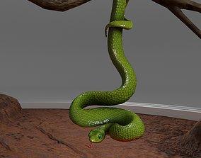 3D model Viper Snake