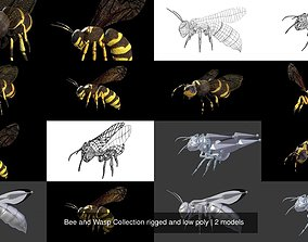 Bee and Wasp Collection rigged and low poly 3D model