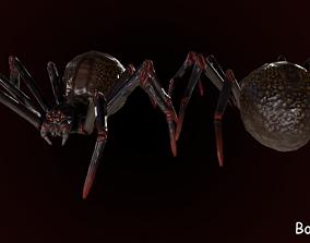 Spider 1 3D asset
