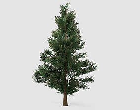 3D model low-poly Fir tree