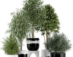 3D Plants collection 230