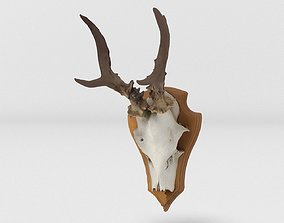 Deer Head 3D model VR / AR ready