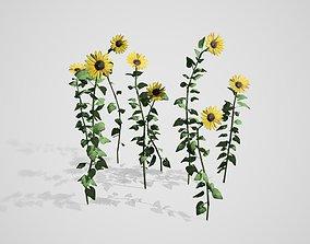 3D model Sunflower Patch
