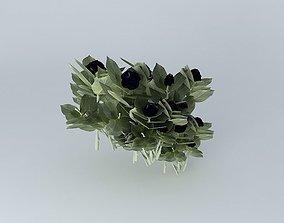 3D hydrangea plant