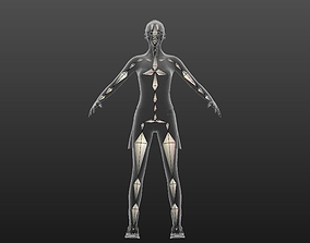 Sarah Advanced Skeleton 3D model