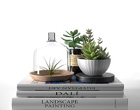3D model Books with Succulents and Air Plant