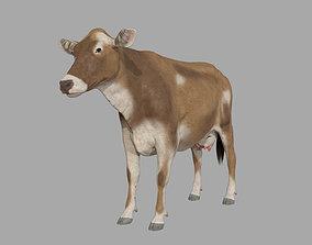 bovine Cattle 3D model