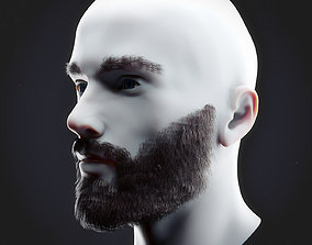 Beard Low Poly 3D model
