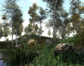 16 Birch Trees for Games 3D