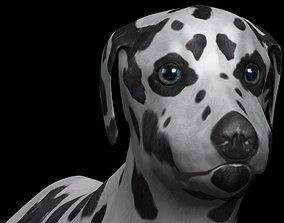 3D model rigged game-ready Dalmatian Dog