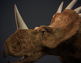 Styracosaurus - Dinosaur 3D