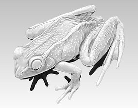 3D print model Detailed Realistic Frog