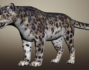 Snow Leopard Animated 3D model rigged