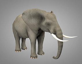 zebra Elephant 3D model animated VR / AR ready