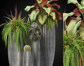 3D model Plants collection 273 Fleur ami LINES