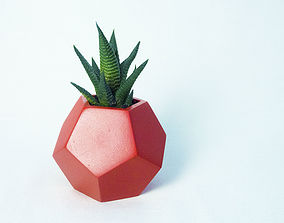 Dodecaedro planter 3D print model