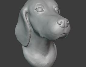 3D printable model English setter- bust